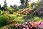 Tuin Accessoires Goedkoop : Tuinwinkels in belgie goedkope belgische tuincentra en